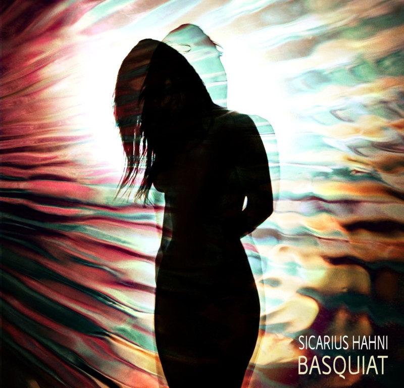 Sicarius Hahni - Basquiat